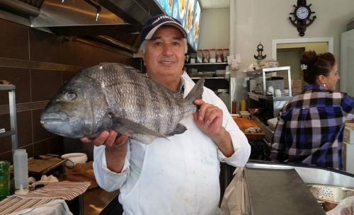 Poissonnerie-Mediterranee-big-fish