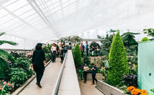 montreal-botanic-garden9