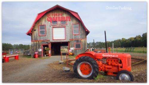 qinn farm montreal